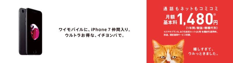 ワイモバイルではiPhoneが格安でセット購入できるのでiPhone人気の高い中高生向け♪